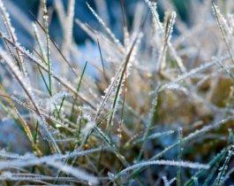 На Южный Урал идет холодный фронт. Ожидаются заморозки