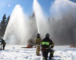 В Челябинской области завершился пожароопасный сезон
